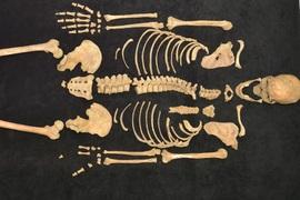 Životní styl a identita velkomoravské aristokracie: archeologická a bioarcheologická analýza dokladů nejvyšších elit v Mikulčicích