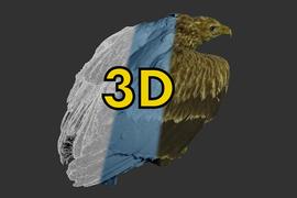 Prezentace a ochrana 3D digitálních objektů v muzejních sbírkách